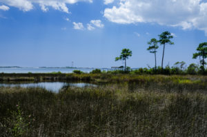 Forest Shores lot for sale on water